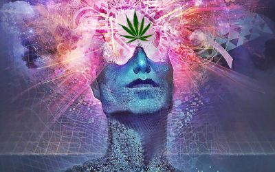 Cannabis: The Gateway to Higher Consciousness.