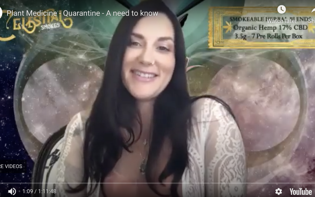 Plant Medicine Interview – A need to know – Quarantine Life