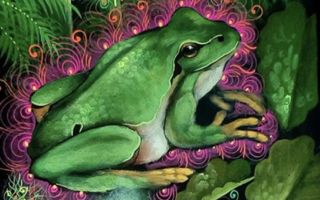 We can Heal the Planet with a Toad. My experience with 5 MEO DMT
